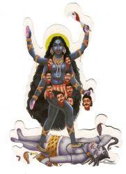 Gravura Adesiva Kali